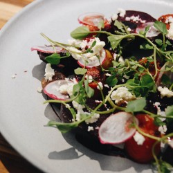 Spotted on Safari • Roasted beet salad